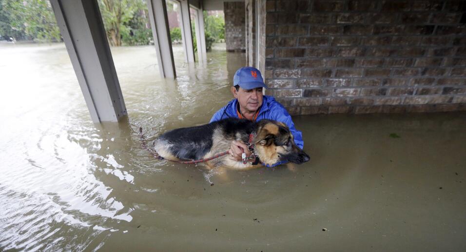 Joe García rescata a su perra Heidi de las aguas que inundan su h...