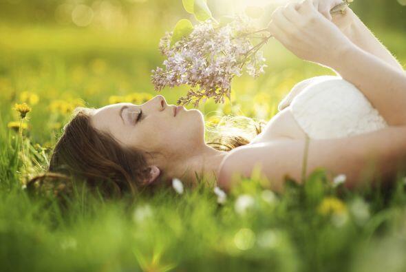 Ponte en contacto con la naturaleza. Esto puede tener un efecto calmante...