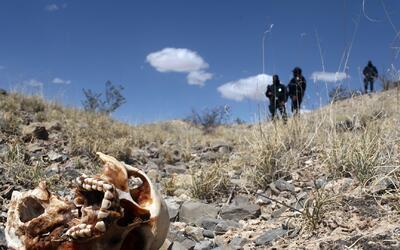 Reporte denuncia la existencia de 390 fosas clandestinas en México. ¿Qui...
