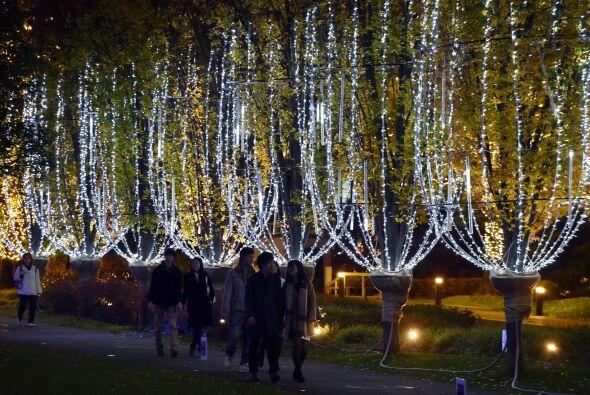 Pero las luminarias son tan populares que después navidad se quitan y se...
