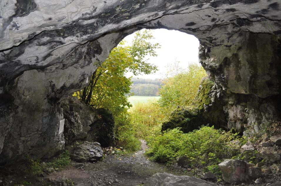 Germany: Caves and ice age art in the Swabian Jura