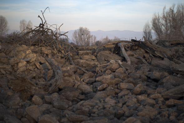 Las afectaciones por la sequía se han dejado sentir tanto en el sector u...