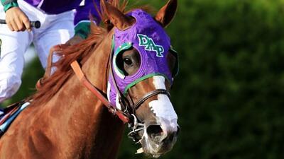 El jinete hispano y su caballo que podrían hacer historia