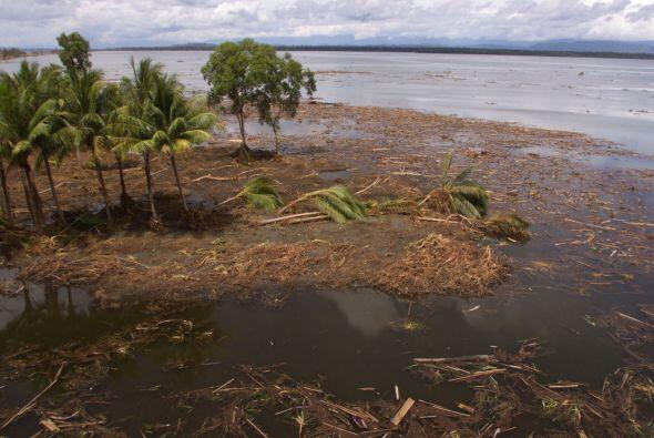 Unas dos mil 200 personas murieron el 17 de julio de 1998 en Papúa Nueva...