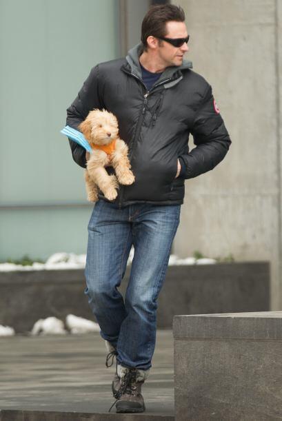 El actor adora las mascotas. Su nueva pooch se suma a una bulldog francé...