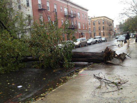La familia Guinea envió esta foto desde Flatbush y East 28th