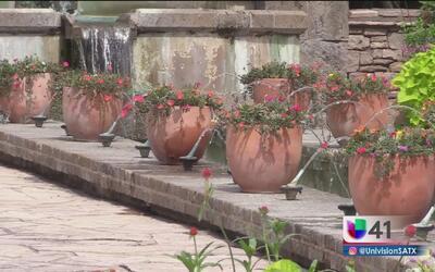 Embellece el jardín de tu casa de una forma muy sencilla
