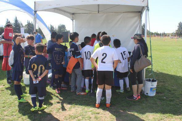 Chicos y grandes disfrutaron una vez más de la Copa Univision. La cual s...