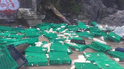 El material fue hallado en la playa luego de que 12 contenedores que con...