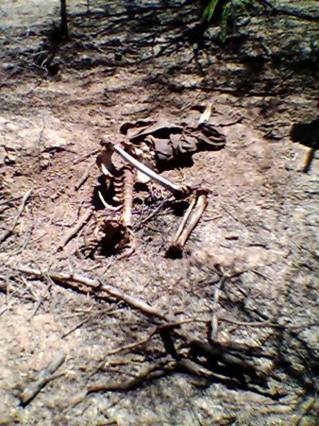 Ocho cadáveres de inmigrantes en un día: la dura labor de buscar cuerpos...