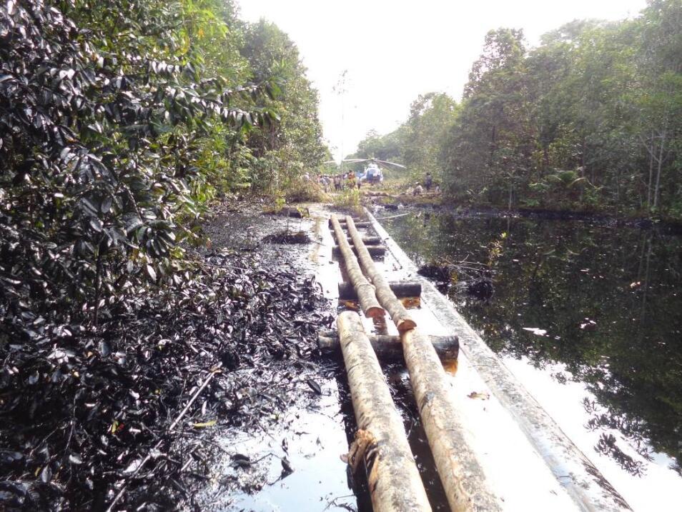 2do derrame en Morona, Loreto-FOTO OEFA-zona afectada