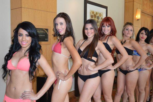 Estas chicas se pusieron el bikini para mostrar sus encantos y convencer...