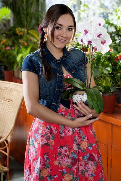 """Sherlyn trabajó con Juan Osorio en """"Una Familia con Suerte""""."""