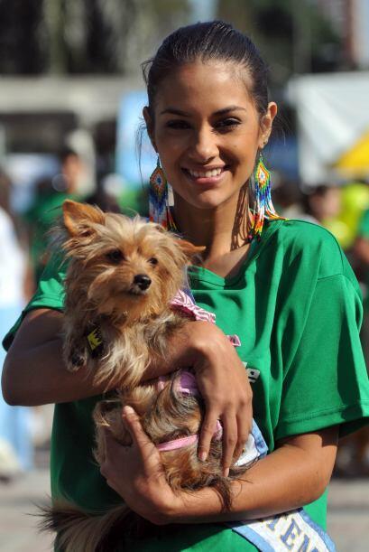 La Asocación de Mascotas Terapéuticas es un grupo de voluntarios que vis...