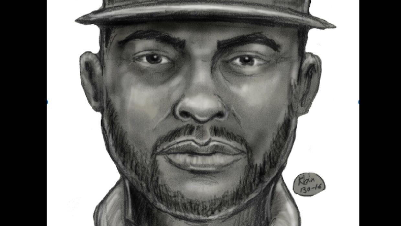 Boceto del sospechoso de atentar contra un menor de 11 años en el tren s...