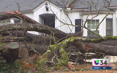 Residentes sufren las secuelas de las inundaciones