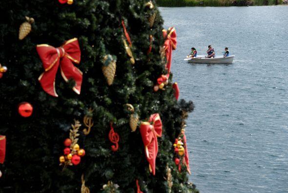 Esta navidad, en todos los hogares no puede faltar el Árbol de Navidad s...