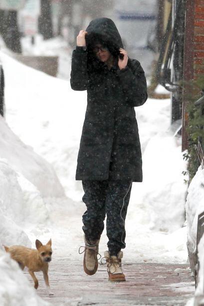 A Jennifer Lawrence y a su pequeño Pippi no les importa el frío.