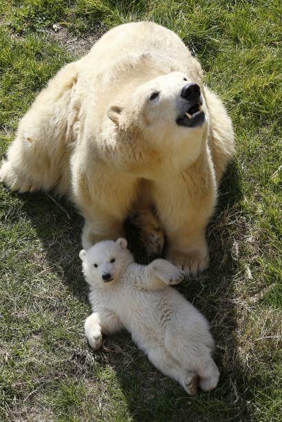 Esta mamá quiso salir a tomar el aire con pequeño.