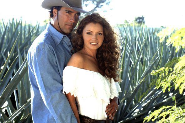 """""""Destilando Amor"""" encabeza esta lista con 10 Premios TVyNovelas 2008."""