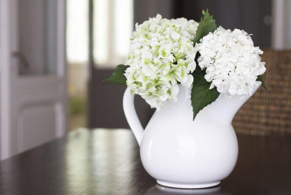 Recuerda que las flores, además de tener color aportan aroma a tu ambien...