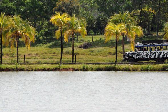 La propiedad, situada en Antioquia, medía casi dos mil hectáreas (20 kil...