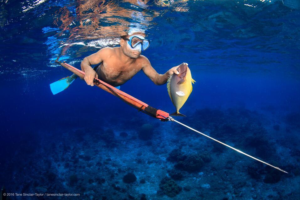 Los pescadores locales son vitales en la buena gestión de los arrecifes,...