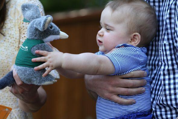 Le gustó tanto el pequeño marsupial que le regalaron un muñeco de peluch...