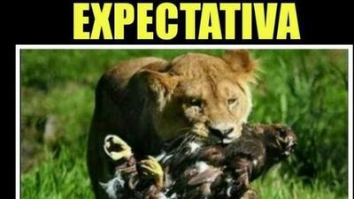 Pumas-América sin anotaciones y los memes los golean