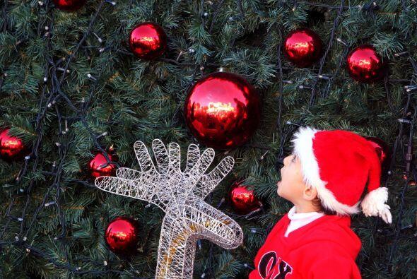 Para empezar, debes saber un poco de historia del árbol de Navidad al qu...