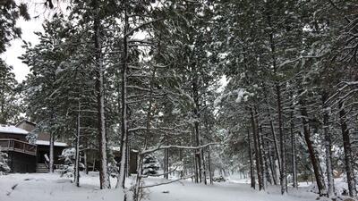 En fotos: La ciudad de Flagstaff amaneció cubierta de nieve