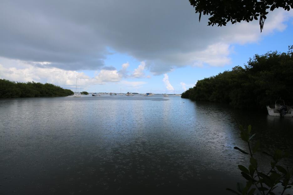 A metros de la casa de Goff y López en Stock Island, varios botes atraca...