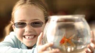 Los chicos también deben proteger sus ojos de los dañinos rayos solares