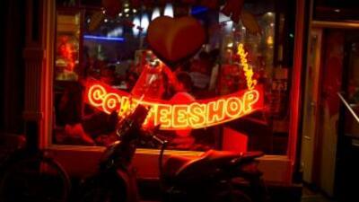 Se estima que cada año medio millón de turistas visitan los coffeeshops...
