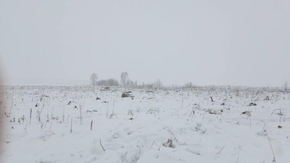 En fotos: los restos del avión que se estrelló cerca de Moscú están ente...