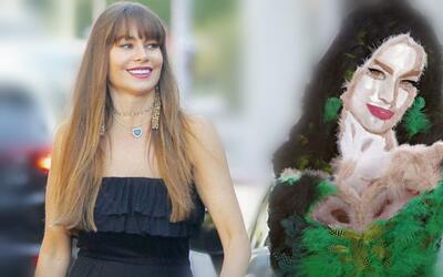 Sofía Vergara cuenta con un retrato en plumas realizado por el ar...