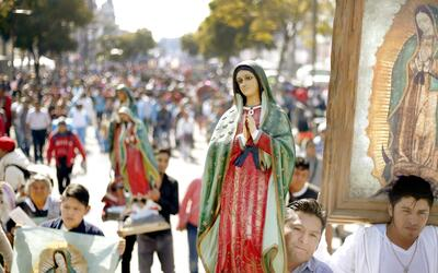 Guadalupe 2017