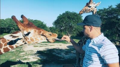 Despertamos en el zoológico de Miami