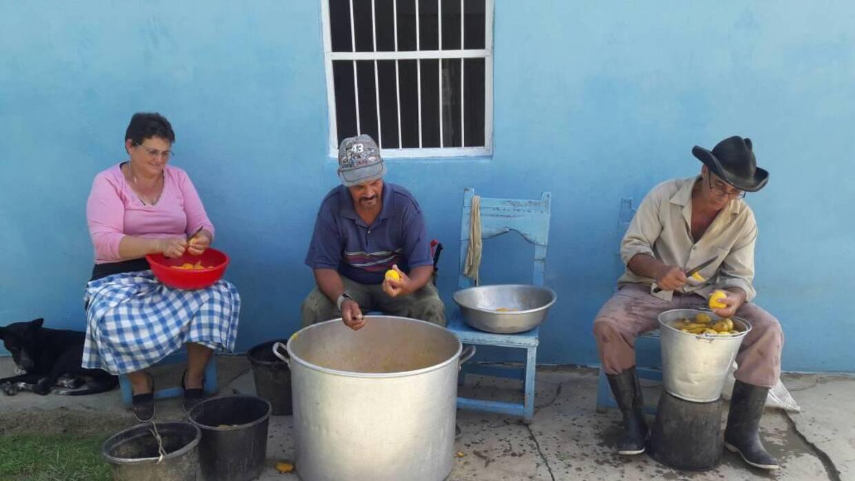 Milagro, Berto y su ayudante cortan mangos frente a su casa de la montaña.