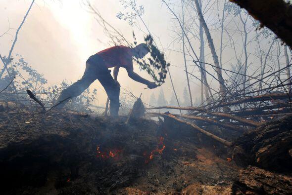Ola de calor en Rusia. Durante 2010, este país sufrió la peor ola de cal...