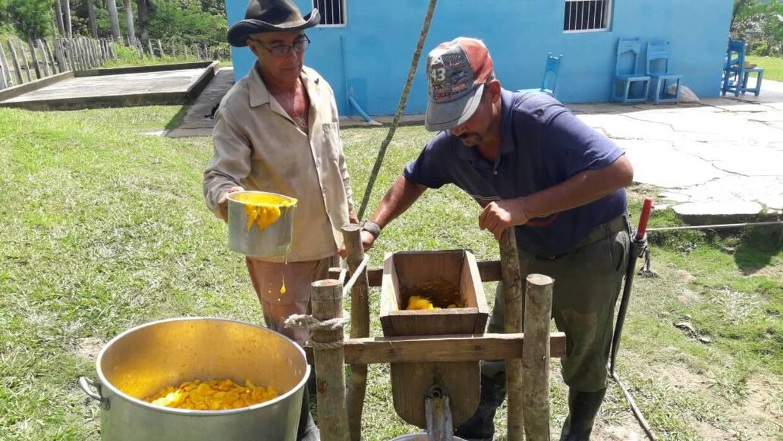 Berto prepara junto a su ayudante el jugo de mango que él y su esposa ve...