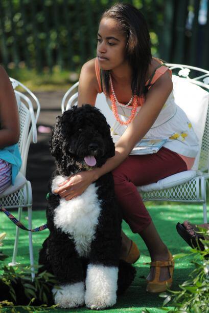 La mascota llenó de alegría a Malia y a Sasha Obama, las hijas de la par...