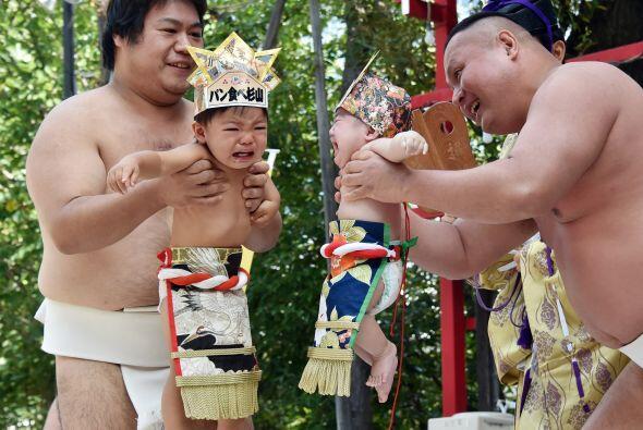 En el Tokyo's Irugi Shrine los luchadores ayudan a los bebés a rebotar e...
