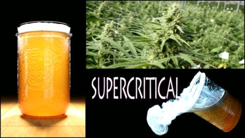 Cerveza elaborada con extractos de marihuana.