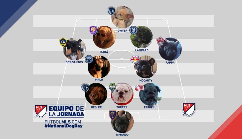 Once Ideal de Perros de la MLS