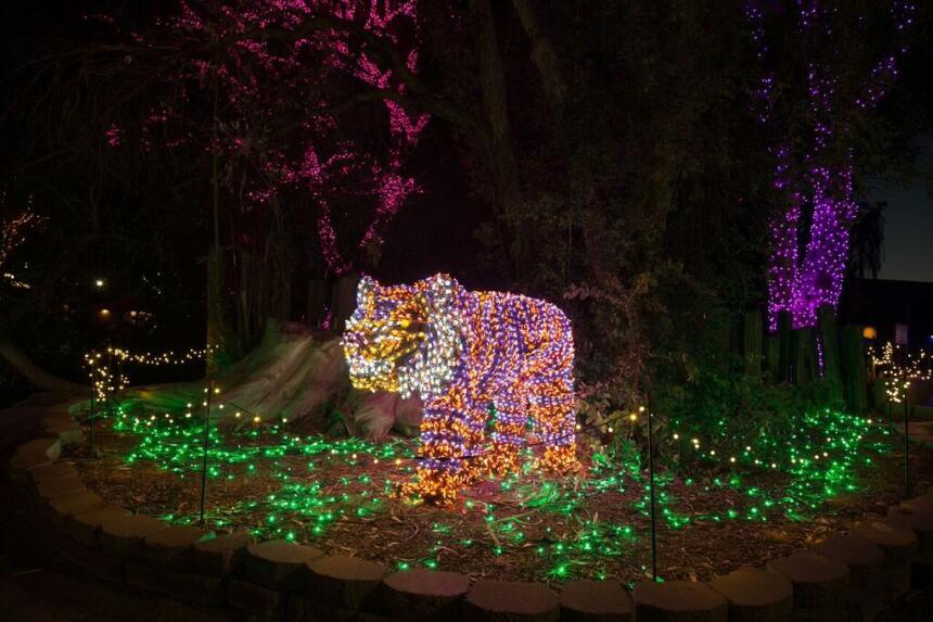 Lo nuevo de ZooLights del Phoenix Zoo