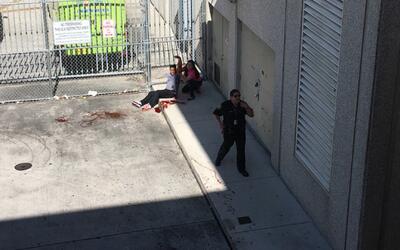 En video: un herido pide ayuda tras el tiroteo en el aeropuerto de Fort...