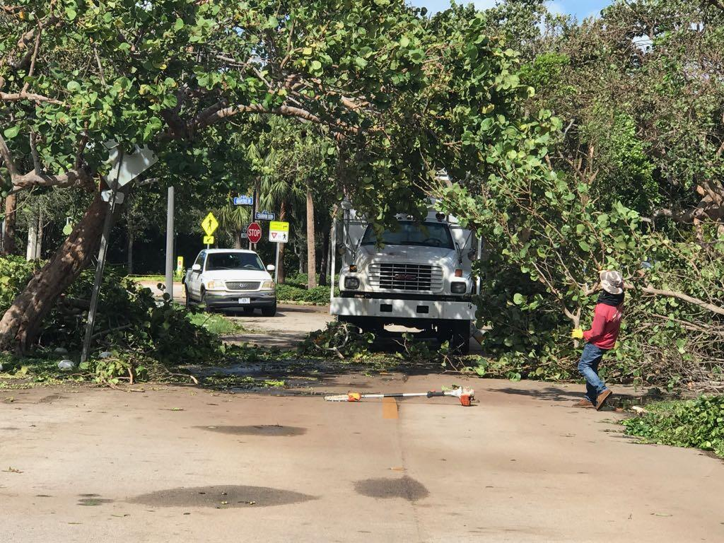 In photos: Getting home after Hurricane Irma Key Biscayne clean up8ef57c...