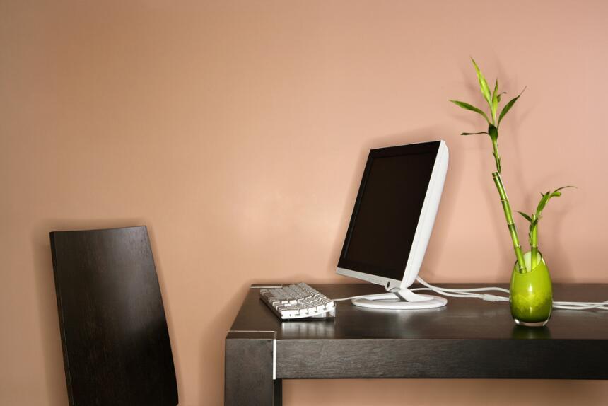 bambú en oficina