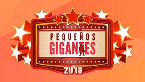 pg logo chico